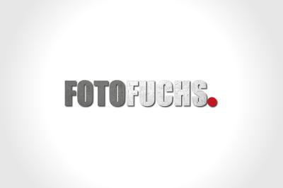 Foto Fuchs